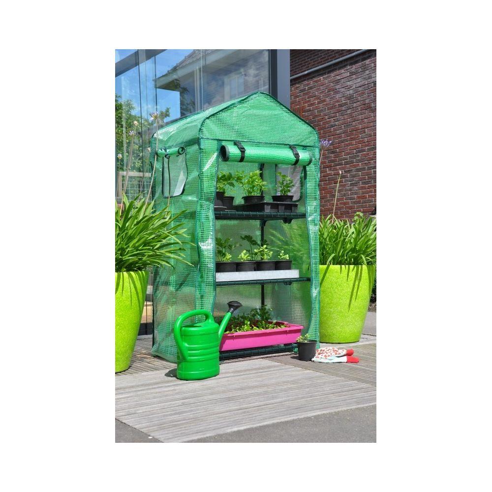 Slim kweken patio-foliekas Apple Mint