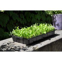 Slim kweken zaaibak 'seed tray' (set van 12 stuks)